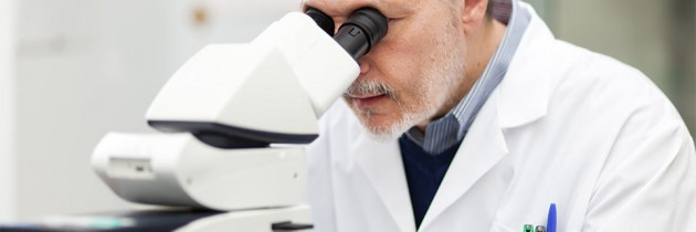 Cząsteczka PDX pomocna w cukrzycy typu 2